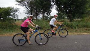 Culture & Wildlife in Rajasthan:  A Cycling Tour