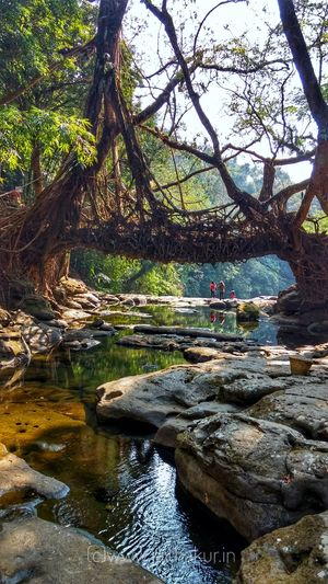 4 days of Magical Meghalaya