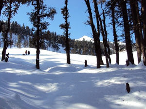 Unpredictable life, unpredictable trek- Birthday at peak- Kedarkantha trek in snow.