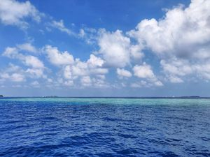 Paradise is here #colourblue