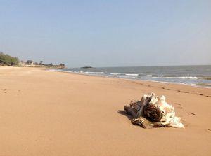 Jallandhar Beach 1/3 by Tripoto