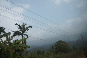 In the lap of nature - Coorg