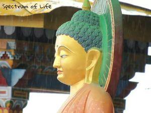 Tawang: An Unexplored Paradise