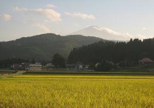 Takamatsu 1/undefined by Tripoto