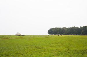 Chandipur Beach 1/16 by Tripoto
