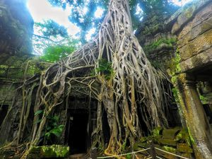 Top 8 Angkor Wat Temples That You Should Definitely Visit in Cambodia