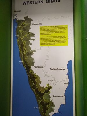 Hidden gems of Mangalore - a glimpse of Pilikula and Phalguni