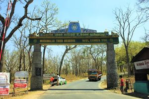 Mudumalai National Park 1/undefined by Tripoto