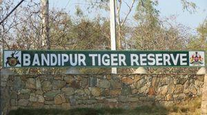 Double treasures of Southern India..... wildlife paradise!!!