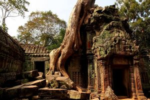 Ta Prohm 1/5 by Tripoto
