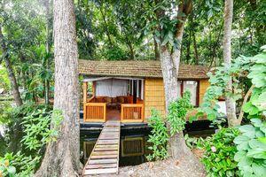 Kerala's Backwaters and Canoe Ville