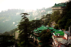 Charm amongst the Chaos {Shimla}