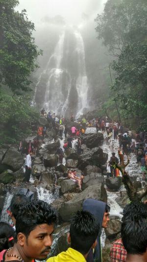 Amboli Water Falls 1/undefined by Tripoto