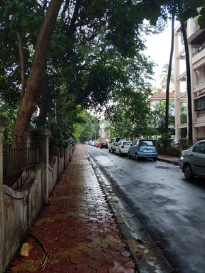 Dadar Parsi Colony: A walk down one of the quietest places in Bombay!