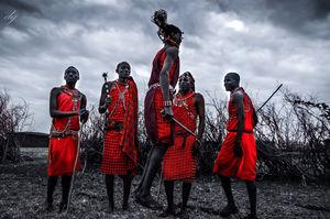 Africa - The Mecca of wildlife
