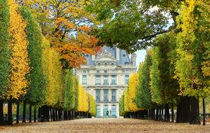Tuileries Garden 1/2 by Tripoto