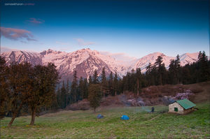 The Great Himalayan National Park: How To Go, What To Do, And All Other Questions Answered