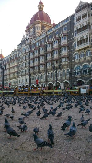 Mumbai - One day with mumbaians