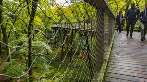 Jasmund National Park 1/undefined by Tripoto