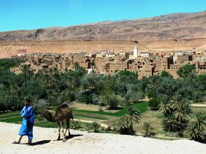 Magical, Mystical MOROCCO!