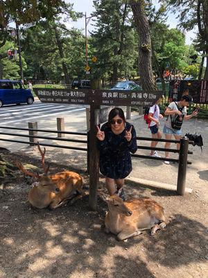 Traveling Japan when i am still Injured