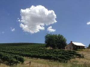 Hentley Farm Wines 1/undefined by Tripoto