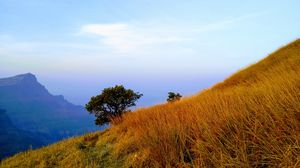 Ratangad Fort trekking and descending Sandhan Valley completely