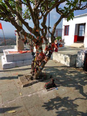 Hanuman Temple 1/undefined by Tripoto