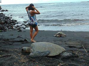 Kailua-Kona 1/undefined by Tripoto