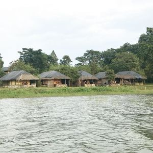 The Bison Kabini - Stay in the Wild