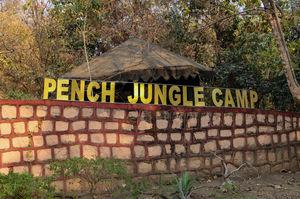 A Jungle Retreat: Pench Jungle Camp #junglestay