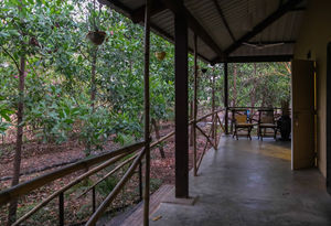A Jungle Retreat: Jen Jon Alibaug#junglestay