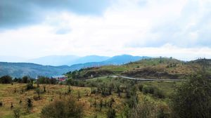 Spring in Sandakphu: It's Much More Than a Trek
