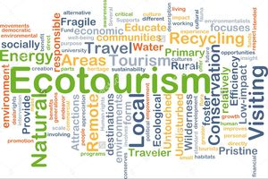 Eco Tourism - The need of the hour