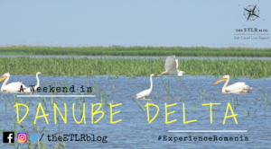 Spend a Weekend in DANUBE DELTA, Romania and RECONNECT with NATURE