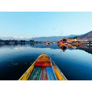 The shikara ride in Dal Lake, Srinagar