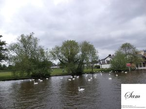 The British countryside - My Photoblog