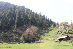 Barot- Far away from maddening crowds..