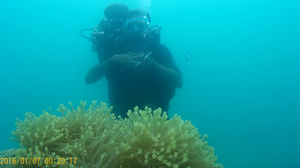 When I let go of my fear of water and scuba dived in Andaman #learningholiday