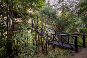 Backpacking for Tree House Hideaway (Bandhavgarh)