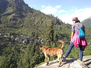 Living The Village Life In Dharamsala