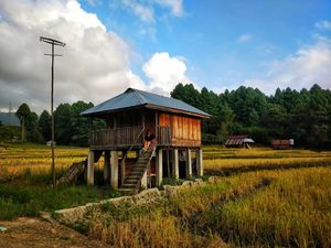 Old Ziro 1/undefined by Tripoto