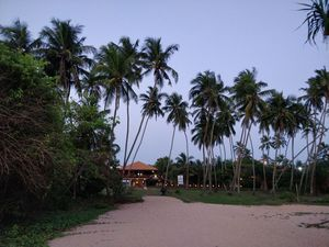 Things to do in Sri Lanka in 5 days (Southern Province)