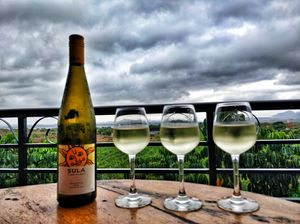 A day trip to Sula Vineyards