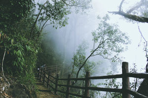 Courting the clouds in Meghalaya
