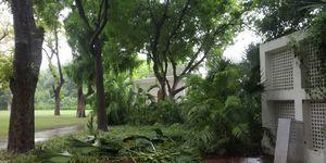 Indira Gandhi Memorial Museum 1/undefined by Tripoto