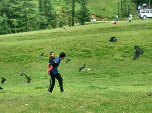 "My latest crush,""Bhulah, ""Mini Switzerland""  Mandi,Himachal"