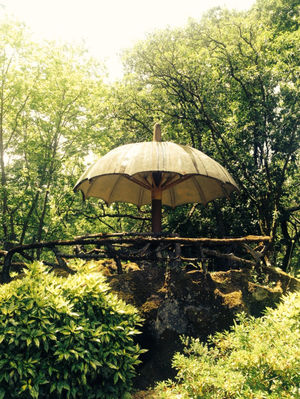 Visiting Quinta de Curvos