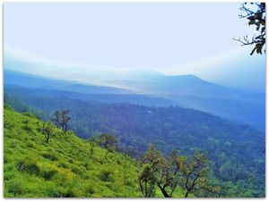 Chikmagalur, the Coffee Estate of India in less than 3000 rupees/30£