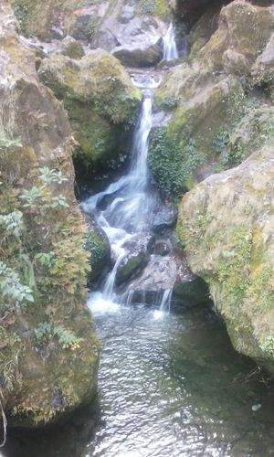Destination: Gurudongmar lake, Yumthang valley and Zero point
